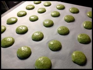 Pistachio Macaron - piped